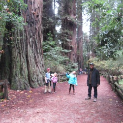 cowell-dad-and-kids-posing-next-to-redwood