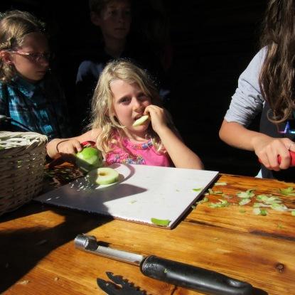 peeling-sarah-chowing-copy