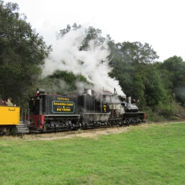 roaring-railorad-goodbye-train2