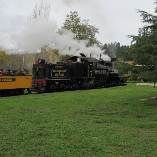 roaring-railroad-goodbye-train