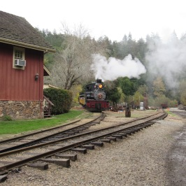 roaring-railroad-here-comes-the-train