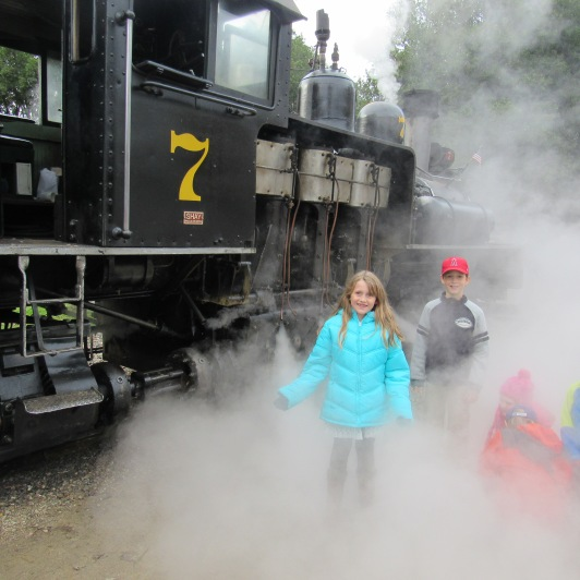 roaring-railroad-in-steam