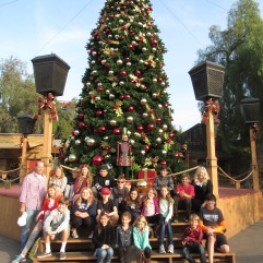 group-pic-cmas-tree
