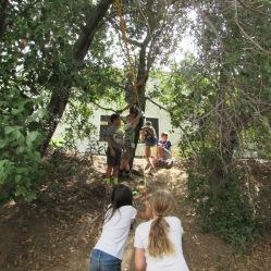 teamwork zipline